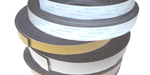 Standard Energy Magnetic Strips